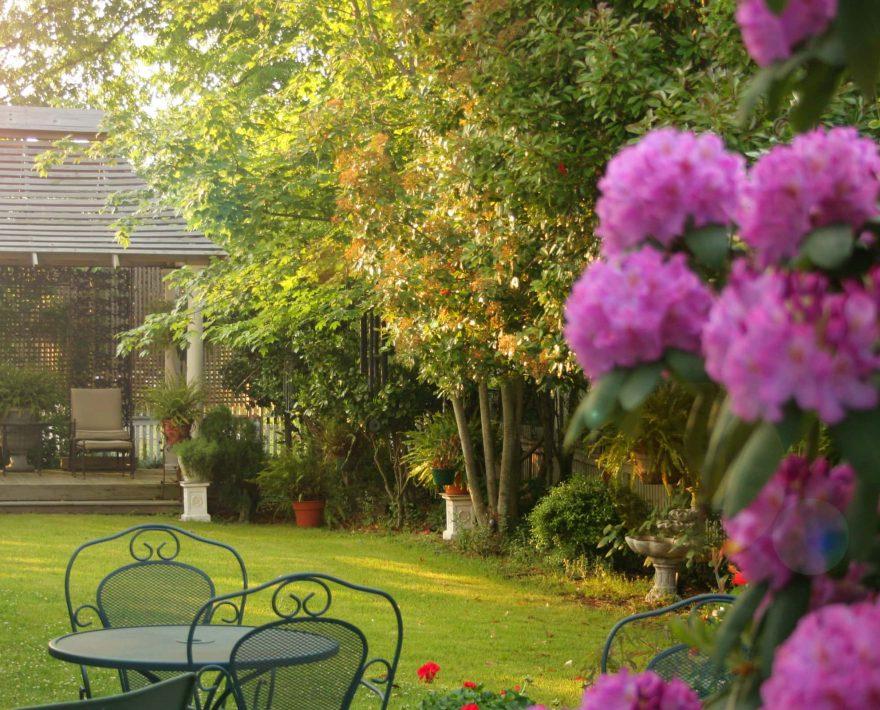 """Garden at White Doe Inn during the """"golden hour"""""""