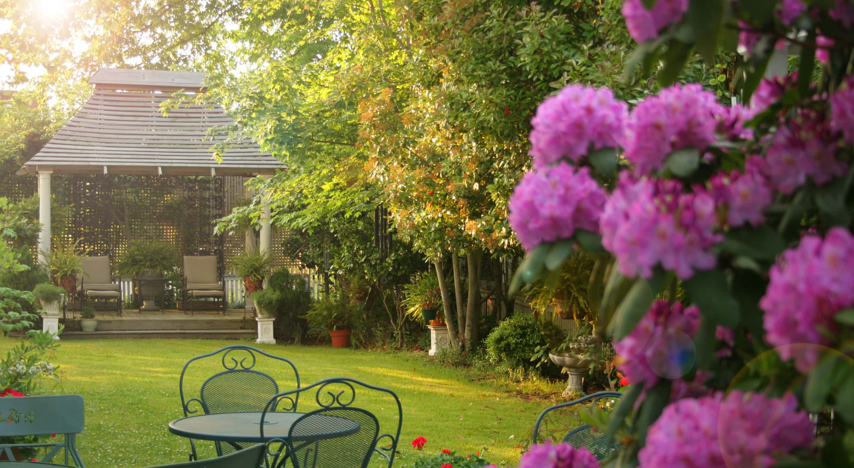 Outer Banks B&B Gardens During Golden Hour