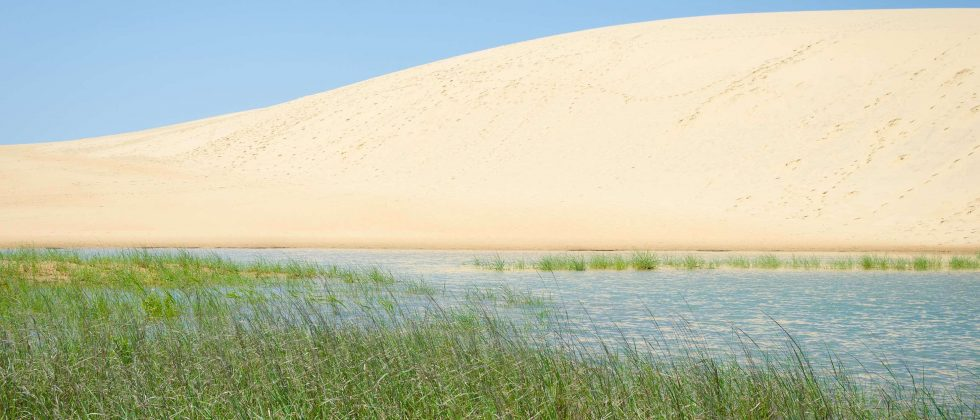Jockey Ridge Sand Dunes