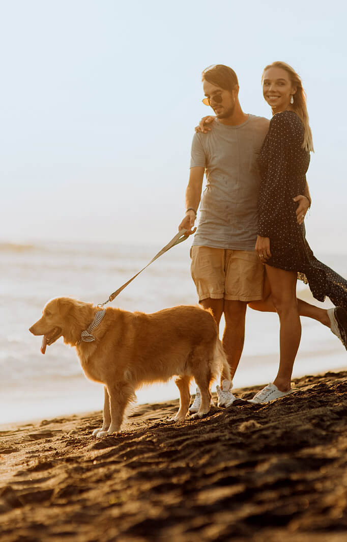 couple with dog on the beach