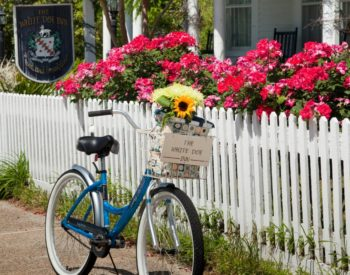 biking and picnic date package