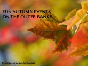 A colorful out-of-focus background with one big russet leave in the foreground. title: autumn events in the Outer Banks.""