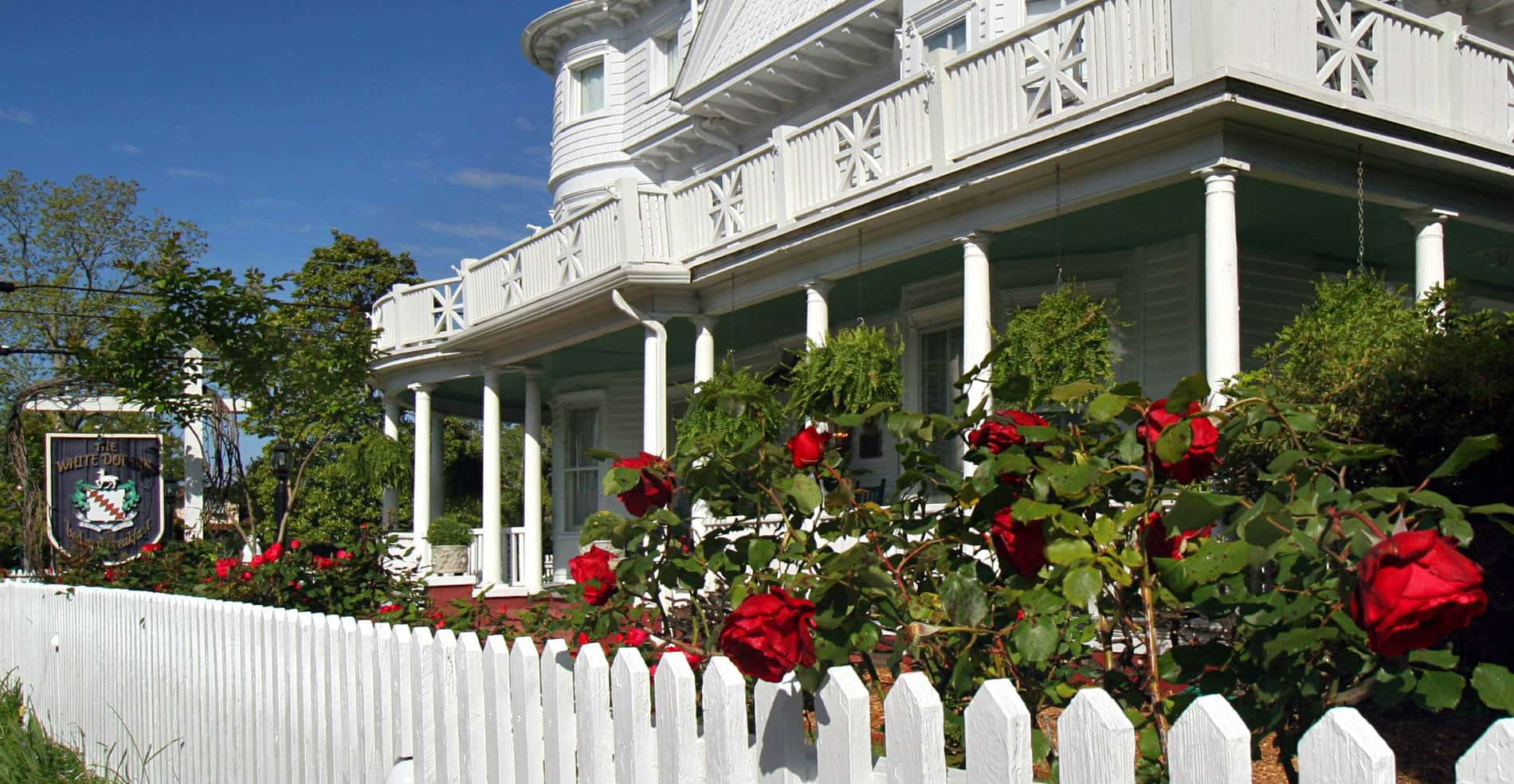 A beautiful view of the inn, with the white picket fence and bright red roses in the foreground