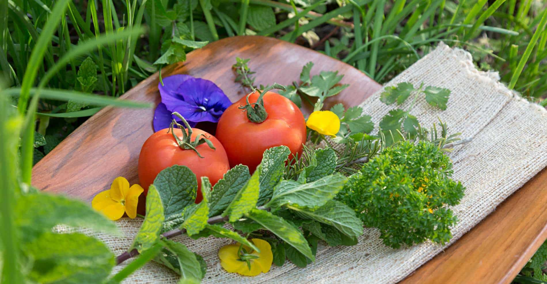On a wooden cutting board is an arrangement of fresh red tomatoes, fresh green parsley, and other herbs