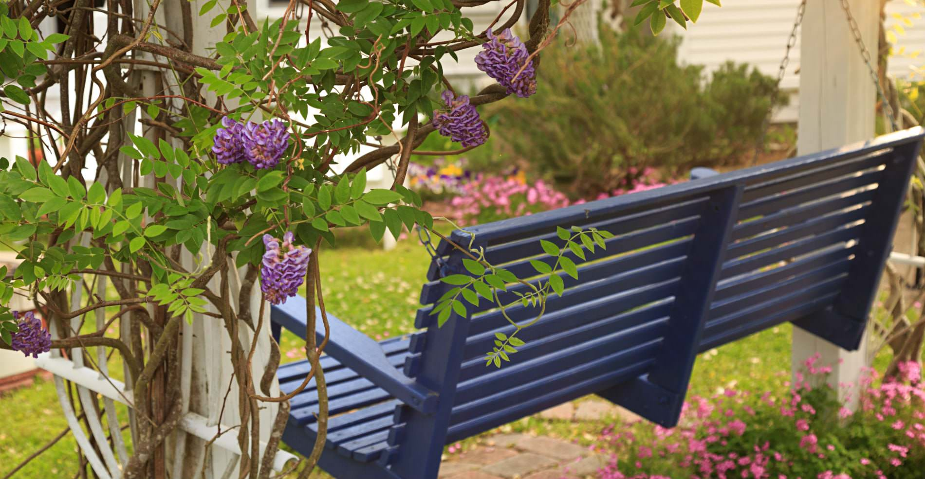 A purple porch swing, with green and purple vines growning up its wooden legs
